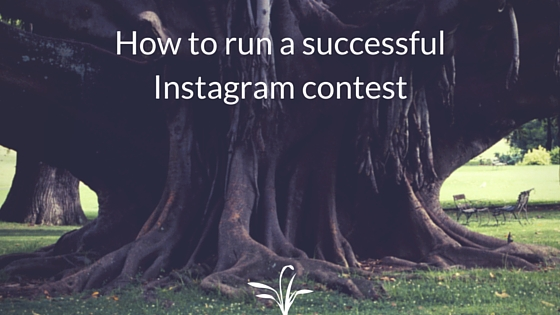 How to run a successful Instagram contest